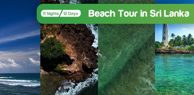 Beach Tour Package