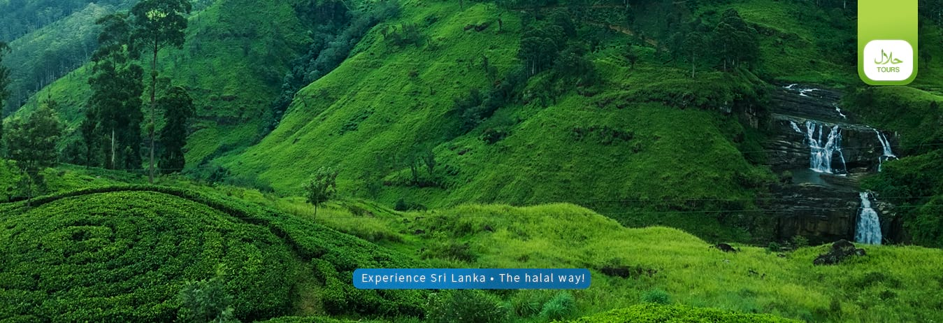 best tourist destinations in sri lanka